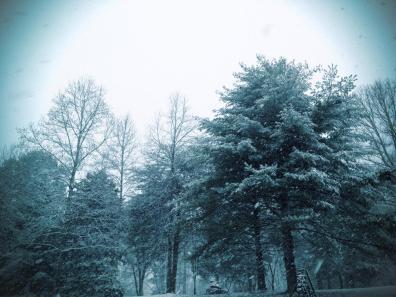 Snow 5J
