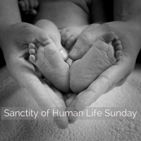 On this Sanctity of Human Life Sunday...